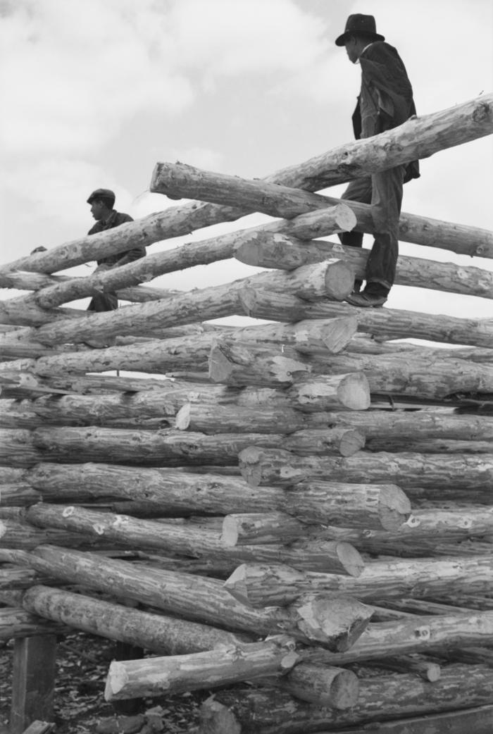 Log Construction (c) Walker Evan